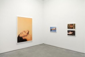 "Ryan McGinley ""Animals"" & ""Grids"""
